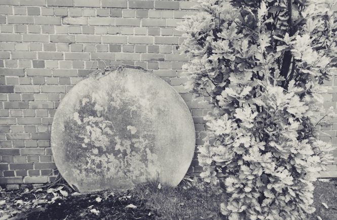 Mondscheibe