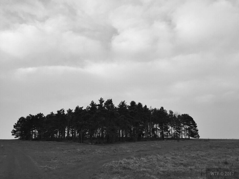 Naturschutzgebiet Mastberg