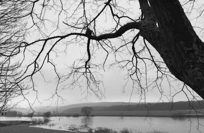 Weser tritt über Ufer